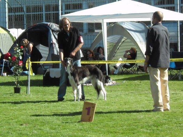 Best of breed Lailah vom Sölring Hüs