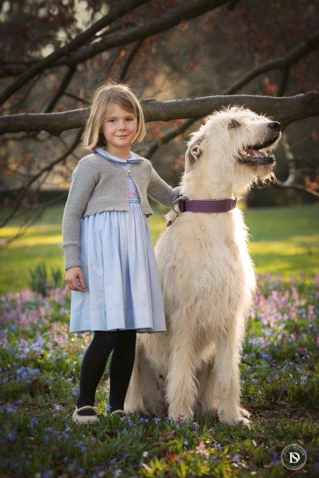Kleines Mädchen mit Irish Wolfhound