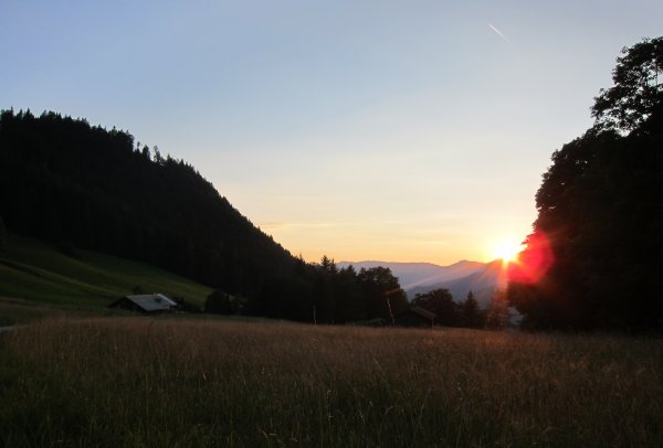 Windhundspaziergang mit Sonnenuntergang am Untersberg