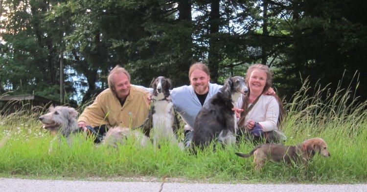 Irish Wolfhound, Barsois und Jack-Dackels nach dem Spaziergang
