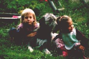 Familienhund und Kinderfreund Irish Wolfhound